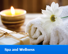 Spa - Wellness